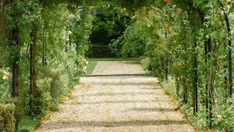 Czy do przebudowy ogrodu potrzebny jest architekt krajobrazu
